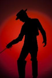 Zorro, Plakatmotiv